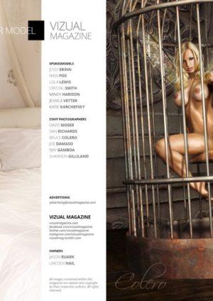 Vizual Magazine Vol 14 - March 2016 2