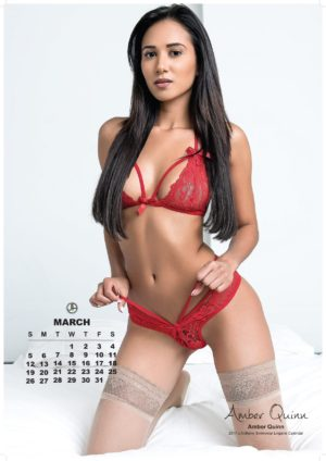 J Anthony 2017 Swimwear Lingerie Calendar