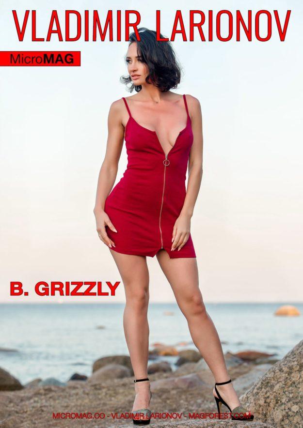 Vladimir Larionov Micromag – B. Grizzly – Issue 2