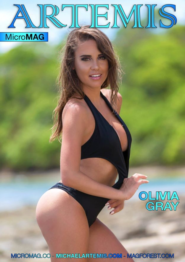 Artemis Micromag – Olivia Gray – Issue 2