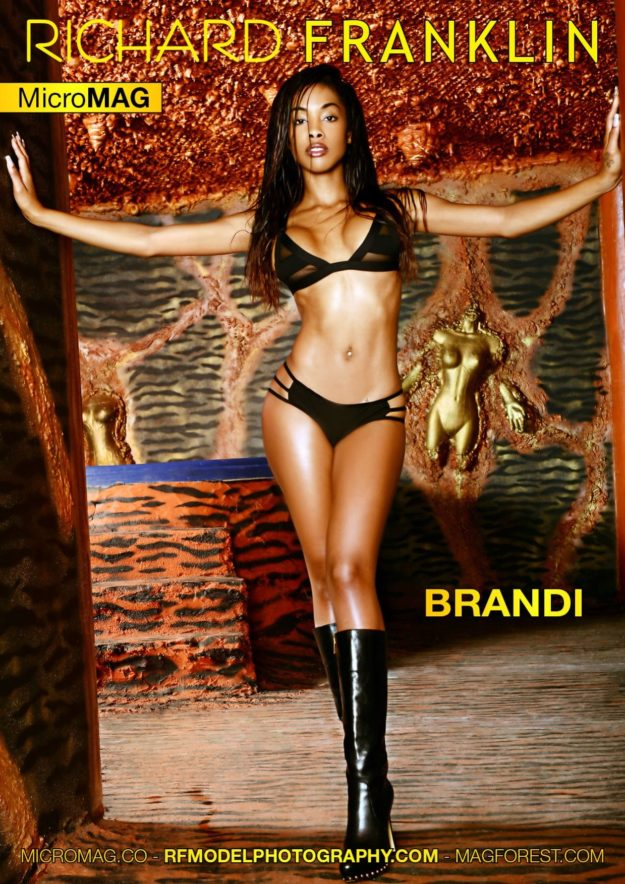 Richard Franklin Micromag – Brandi