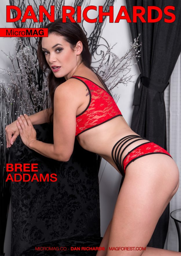 Dan Richards Micromag – Bree Addams – Issue 2