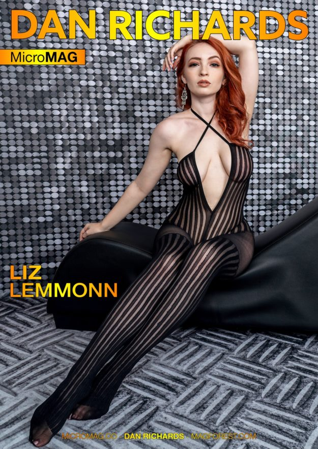Dan Richards Micromag – Liz Lemmonn – Issue 6